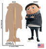 Life-size cardboard standee of Young Gru from the new movie Minions Rise of Gru with back and front dimensions.