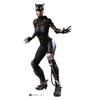 Life-size Catwoman - Injustice Gods Among Us Cardboard Standup | Cardboard Cutout