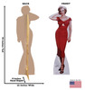 Life-size cardboard standee of Marilyn Monroe Niagara with front and back dimensions.
