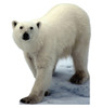 Polar Bear Life-Size Cardboard Cutout