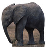 Baby Elephant-TALKING - Cardboard Cutout Front View