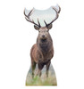 Life-size Elk Cardboard Standup | Cardboard Cutout