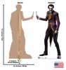 The Joker - Injustice Gods Among Us - Cardboard Cutout
