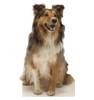 Life-size Collie Dog Cardboard Standup