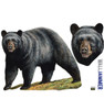 Life-size Black Bear WallJammer Wall Decal