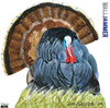 Life-size Wild Turkey WallJammer Wall Decal