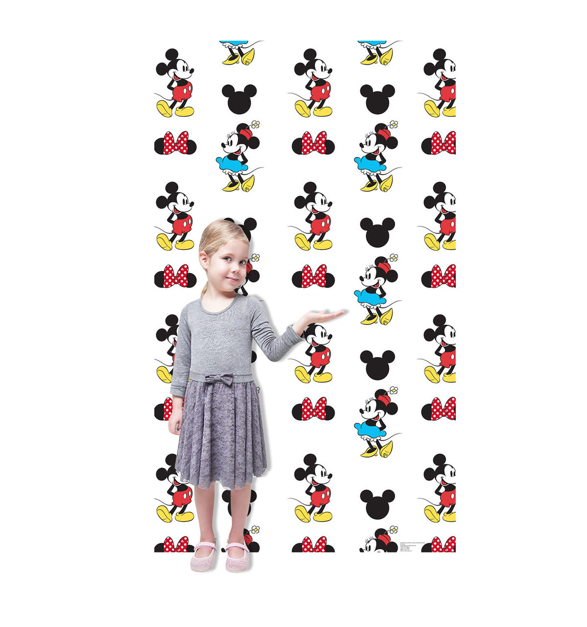 Life-size Mickey and Minnie Step and Repeat Standup Cardboard Standup 3