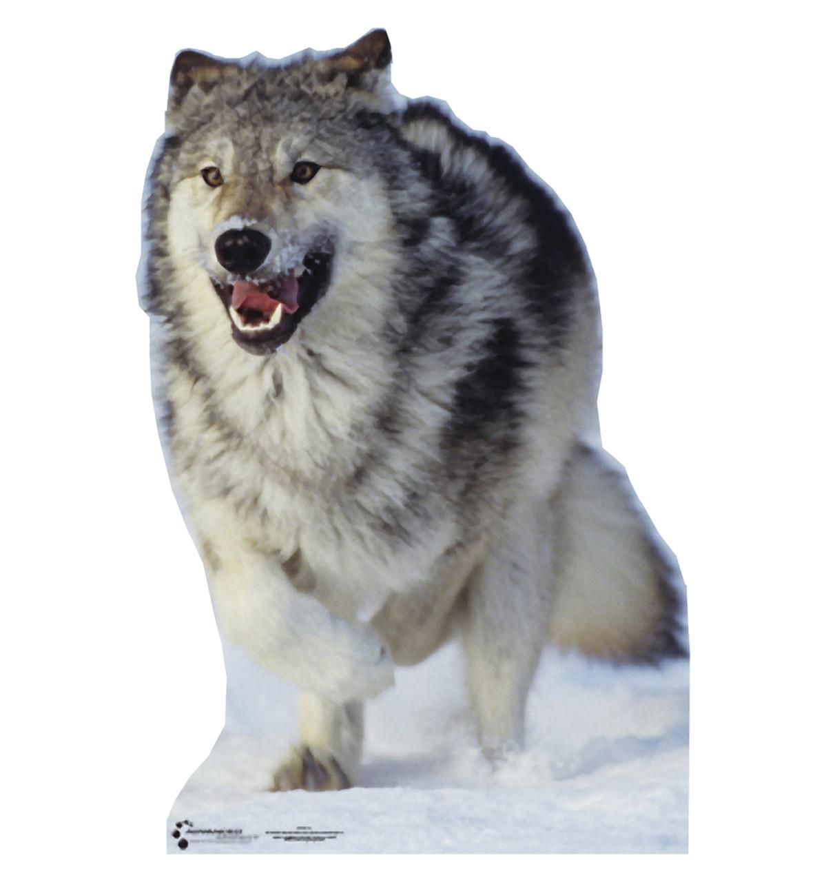 Wolf-Cardboard Cutout 733