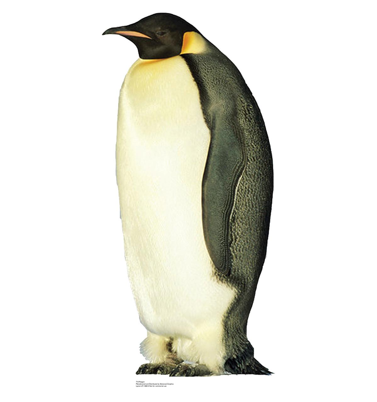 Life-size Penguin Cardboard Standup