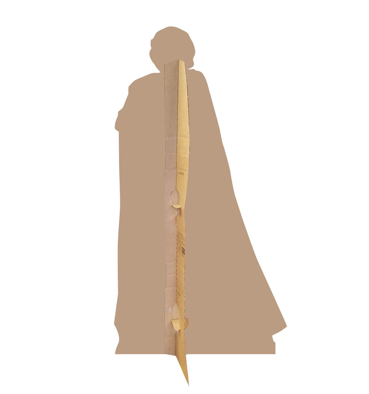 Luke Skywalker - Star Wars: The Last Jedi Life-Size Cardboard Cutout 2