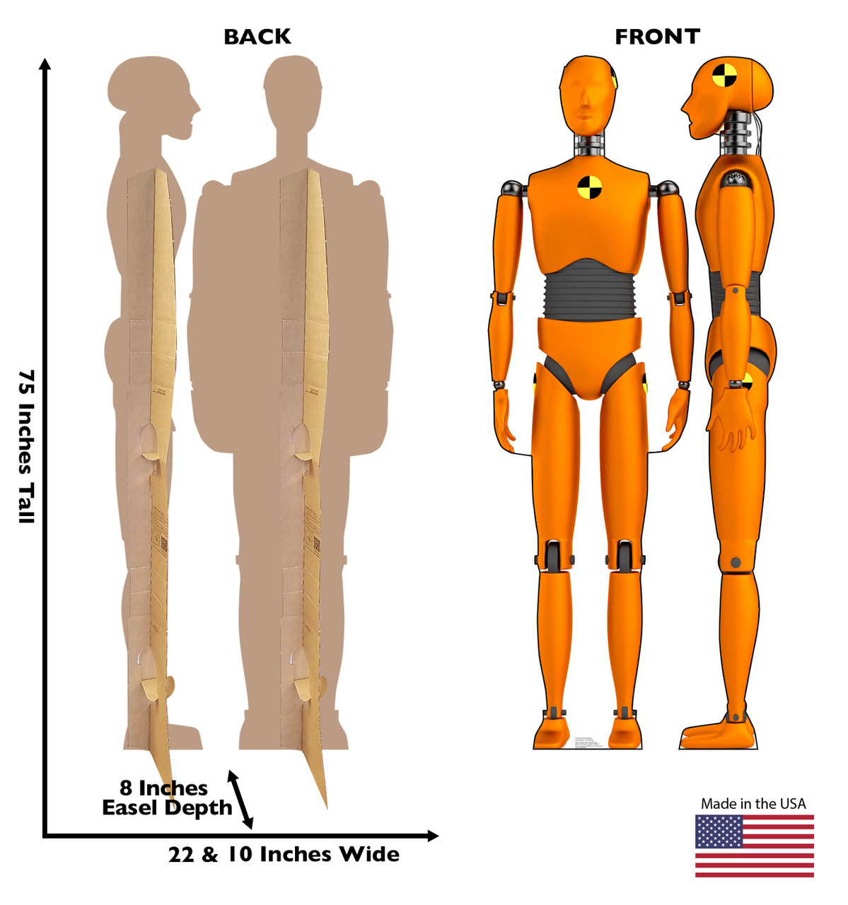 Life-size cardboard standee of Crash Test Dummies (set of two) with back and front dimensions.