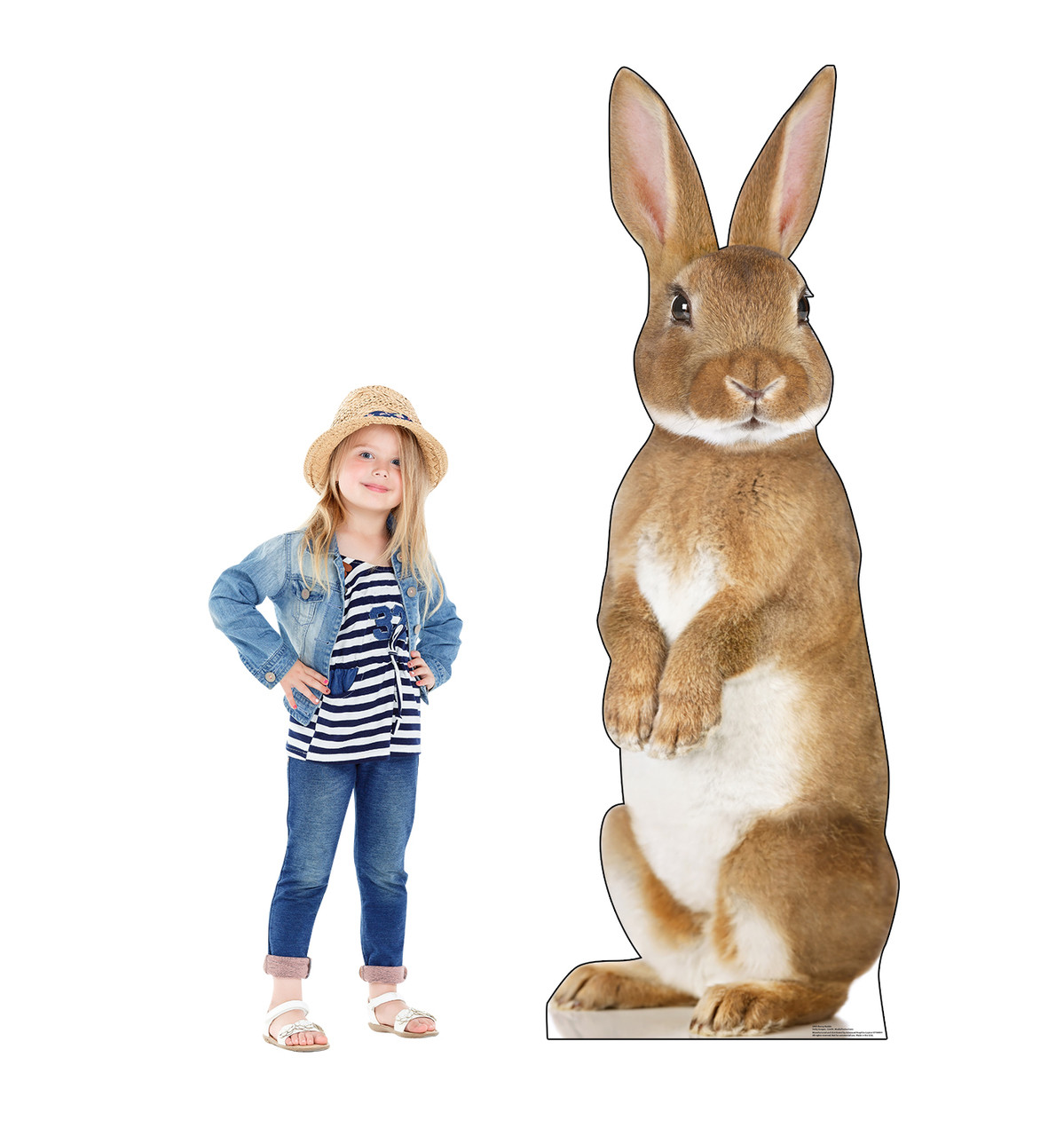 This is a life-size cardboard standee of a Bunny Rabbit with model.