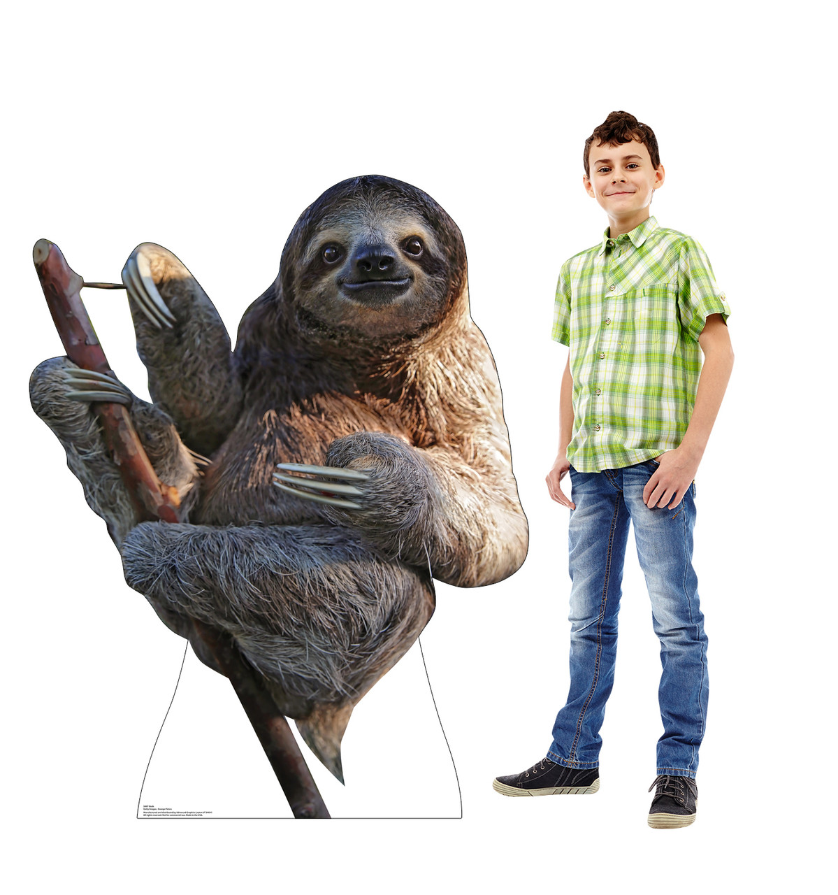 Life-size cardboard standee of a Sloth Lifesize