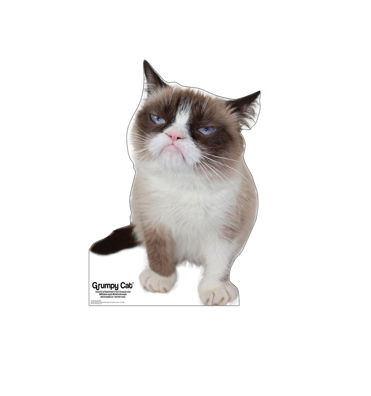 Grumpy Cat 3047