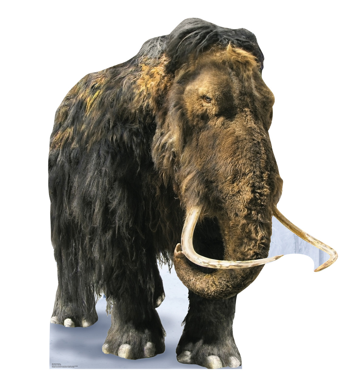 Life-size cardboard standee of the Woolly Mammoth.