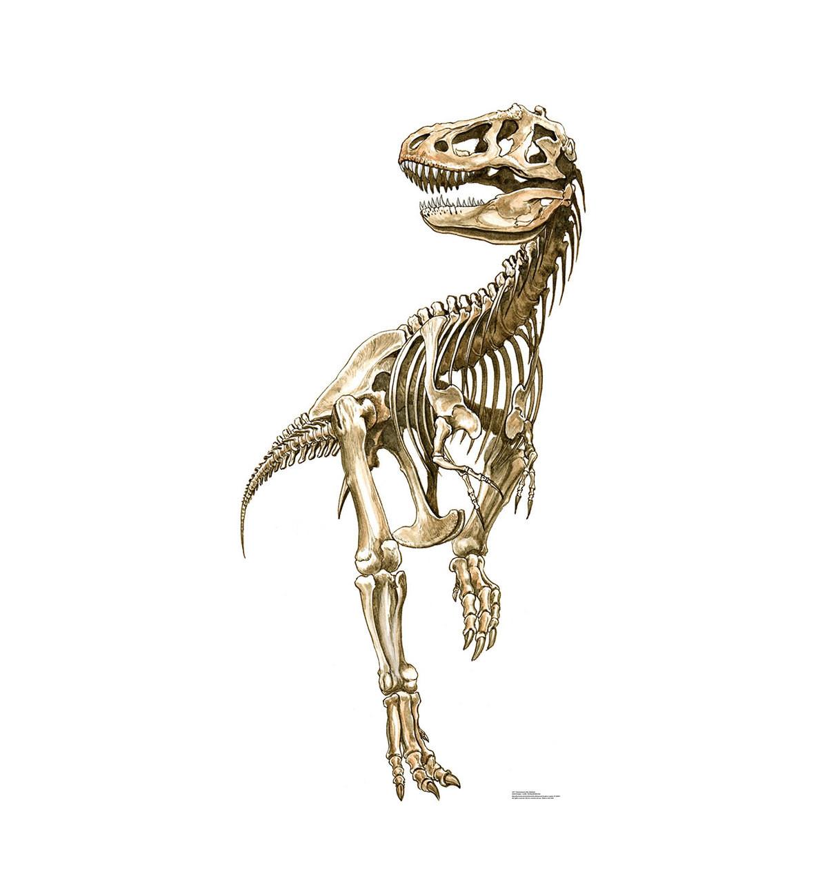Tyrannosaurus Rex Skeleton - Cardboard Cutout