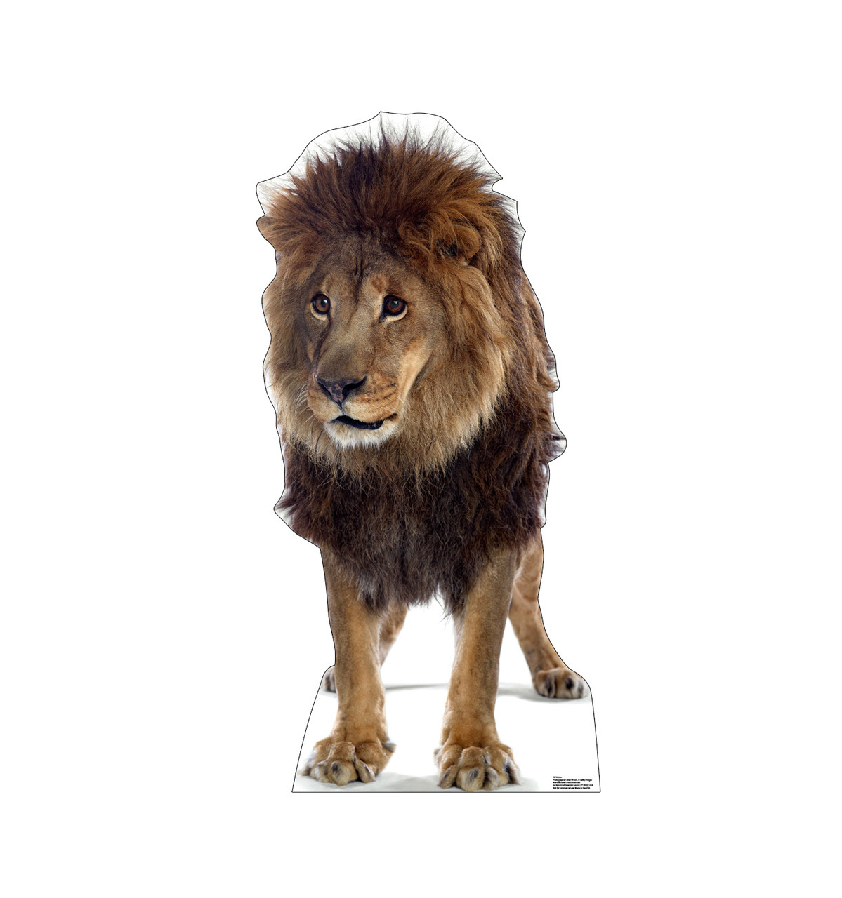 Life-size cardboard standee of a Lion.