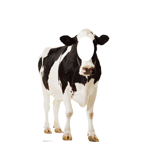 Cow Stand-In 2300