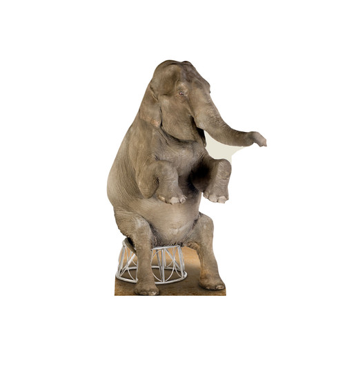Life-size standee of Asian Elephant