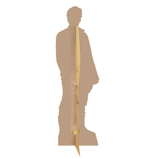 Poe -Star Wars VIII The Last Jedi Cardboard Cutout 2531