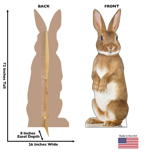 This is a life-size cardboard standee of a Bunny Rabbit with front and back dimensions.