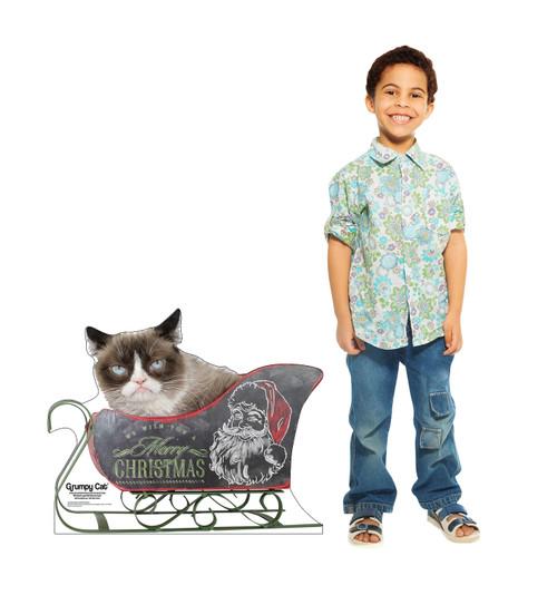 Grumpy Cat - Christmas 3048