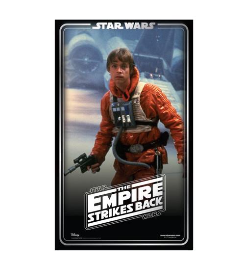 Life-size cardboard standee backdrop of Luke Skywalker. Celebrating 40 years.