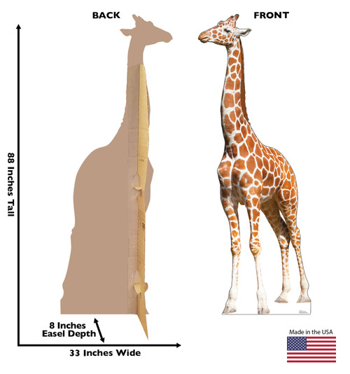 Life-size Giraffe Cardboard Standup | Cardboard Cutout with back and front dimensions.