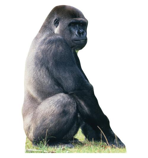 Life-size Gorilla - Talking Cardboard Standup