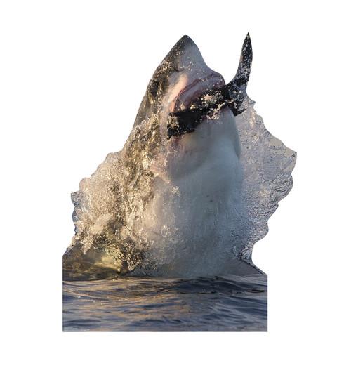 Life-size Great White Shark Cardboard Standup