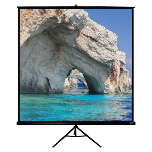 "HamiltonBuhl 135"" Diag. (96x96) Tripod Projector Screen, Square Format, Matte White Fabric, Black Case"