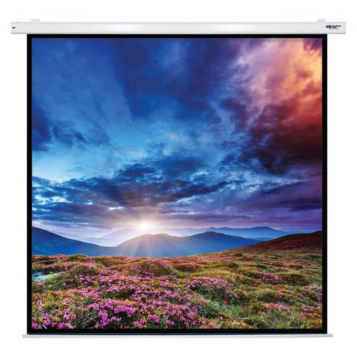 "HamiltonBuhl 135"" Diag. (96x96) Electric Projector Screen, Square Format, with Matte White Fabric"