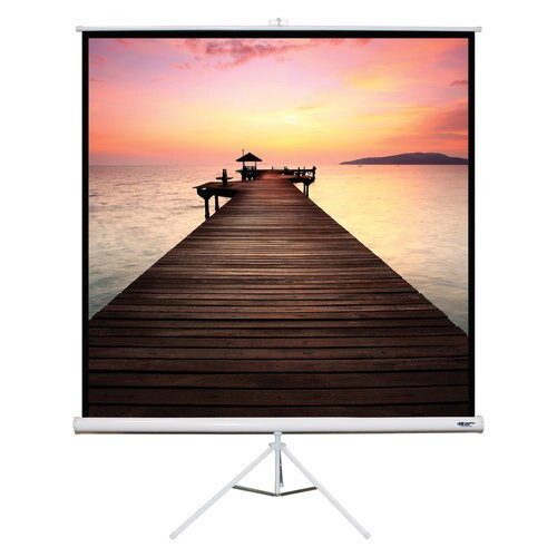 "HamiltonBuhl 99"" Diag. (70x70) Tripod Projector Screen, Square Format, Matte White Fabric"