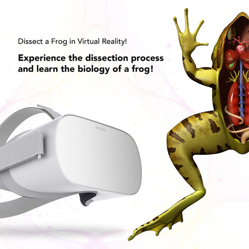 Virtual Reality Frog Dissection and Oculus Go