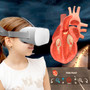 HamiltonBuhl®  Oculus Go Virtual Reality Anatomy and Body Systems - Educational VR Experience