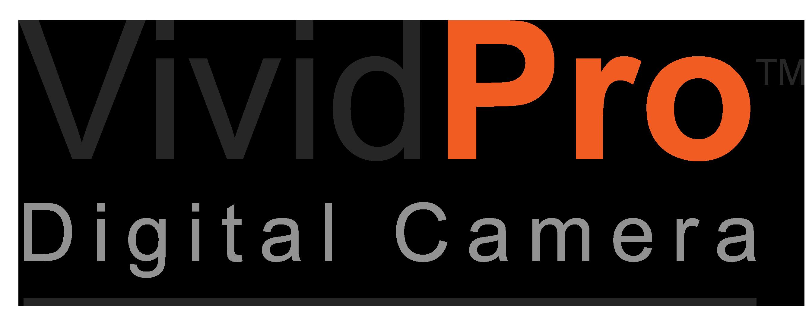 logo-vividpro.png