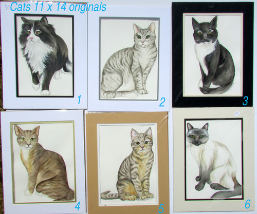 cat originals 1