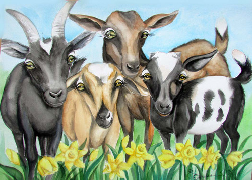 Goats and sunflower 5x7 card blank with envelope