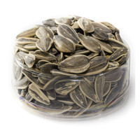 Salted Israeli Sunflower Seeds