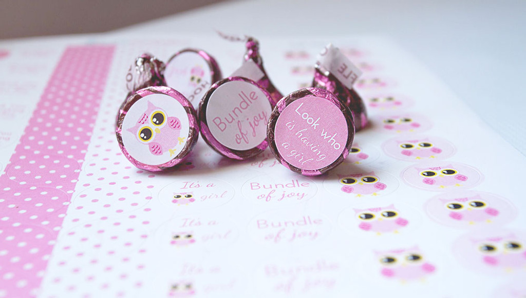 Pink Owl Mini Candy Chocolate Stickers 108 Labels