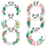 cactus flowers baby closet dividers