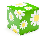 60mm Daisy Floral Crashlock Cube Carton