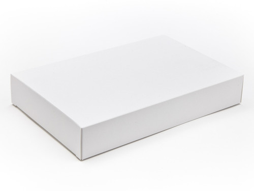 Large Plain Carton / Fudge Carton - White | MeridianSP