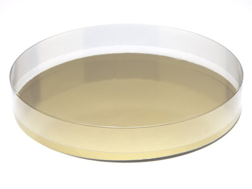 180mm Round Transparent Base and Lid - Clear | MeridianSP