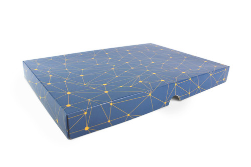 48 Choc Geometric Blue and Yellow Print Point to Point Lid