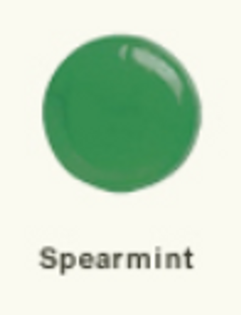 Edas sugar free spearmint hard candy