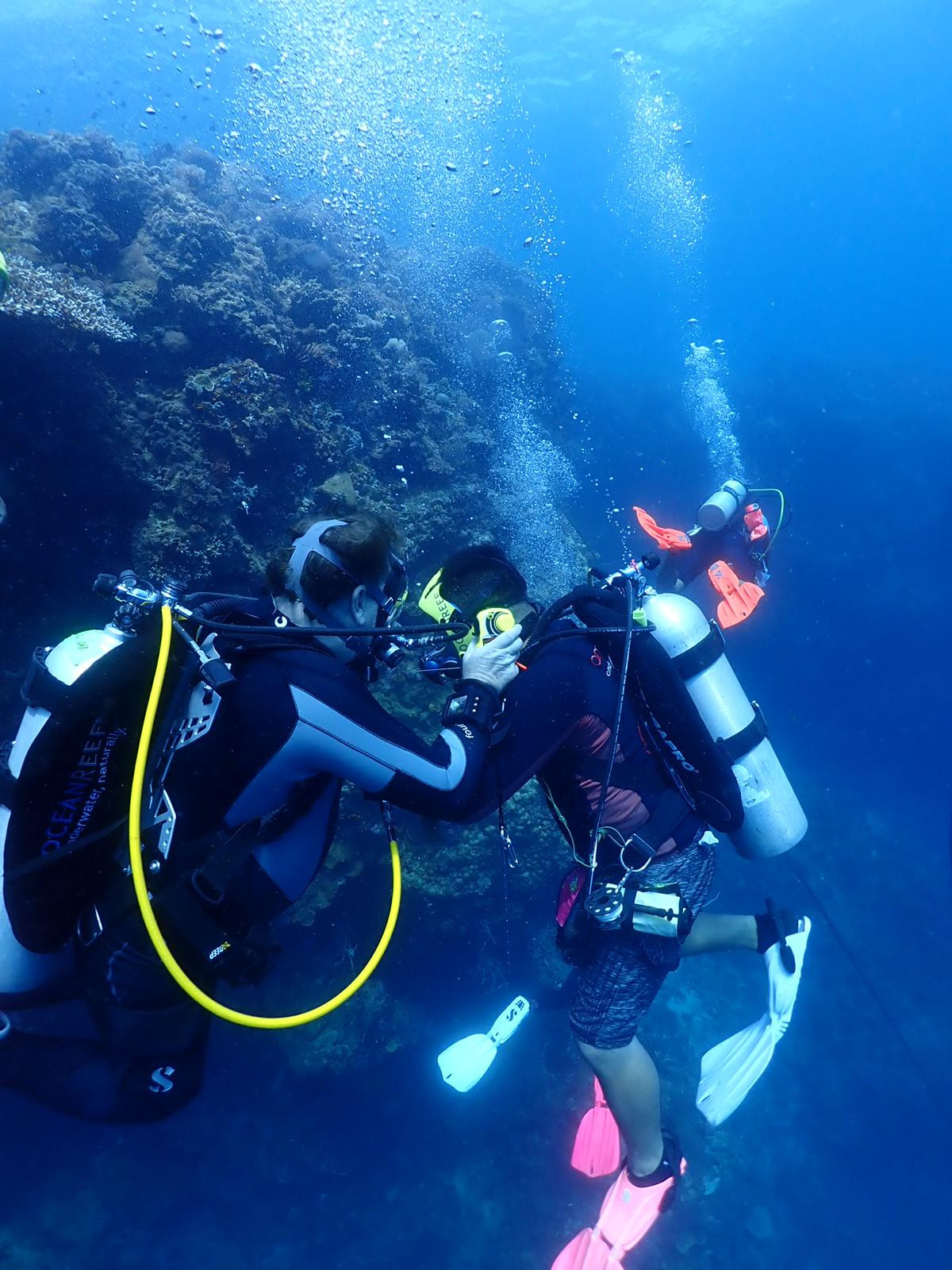 M101A G.divers Underwater Receiving Unit