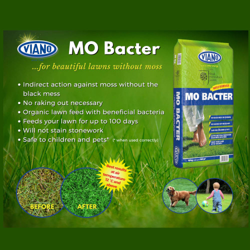 Viano Mo Bacter