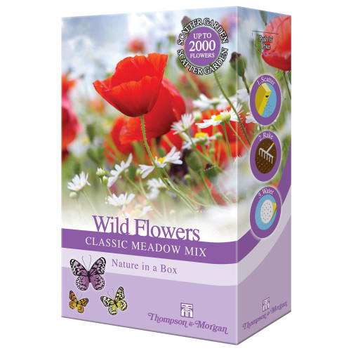 WILD FLOWERS MEADOW MIX