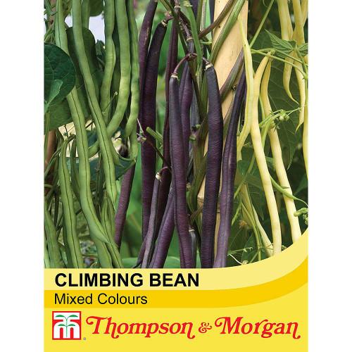 Climbing Bean Mixed